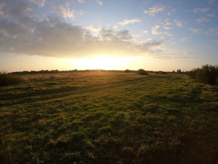 Природа Sunset