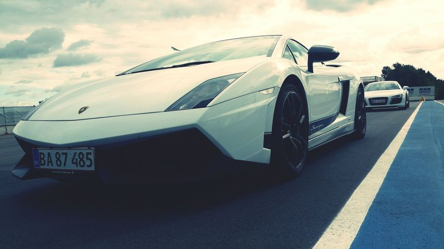 Lamborghini Gallardo Beautiful 2016 Sportscar Track Racetrack Danmark White Fast Superleggera Lamborghini Gallardo Lamborghini Superleggera Audi Audi R8 R8 Cars Beast