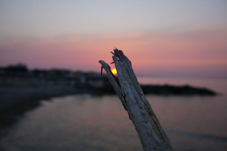 Close-up of orange sky at sunset
