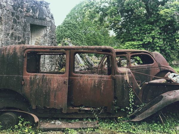 Plant Tree Nature Abandoned Day No People Old Obsolete Run-down Rusty Land Transportation Decline Mode Of Transportation Damaged Outdoors Metal Green Color Field Growth