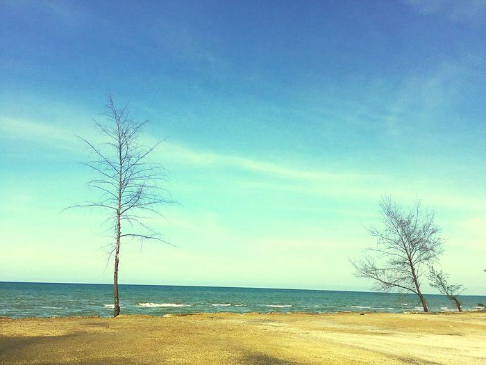 หาดสะก่อม Sea