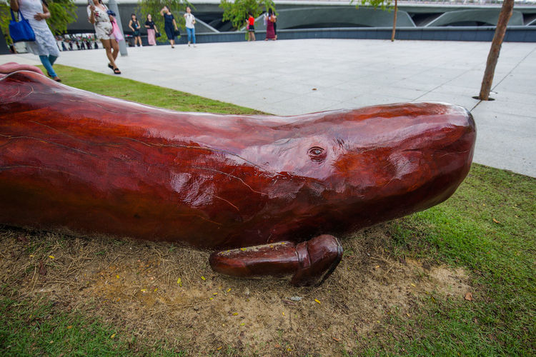 At Esplanade Park The whale has feet (and sneakers)!! Public Park Whale Animal Themes Focus On Foreground Outdoors Park Park - Man Made Space Sculpture Whale Sculpture Wood-material