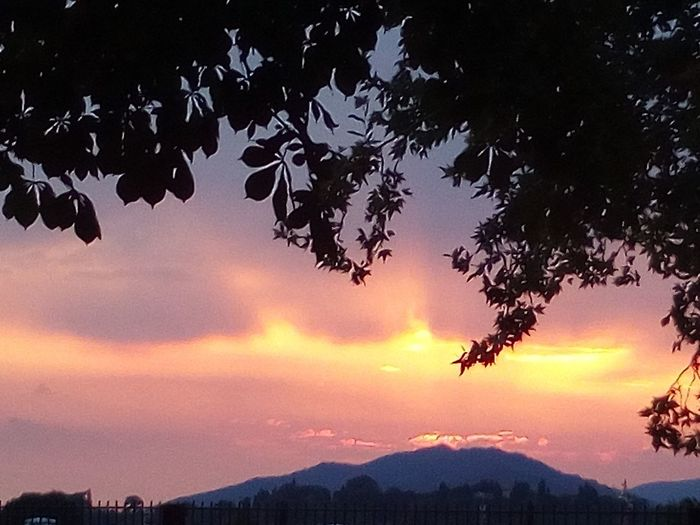 il cielo infuocato di Bergamo!!! Bird Astronomy Tree Mountain Sunset Flying Galaxy City Water Silhouette Space And Astronomy Astrology Nebula