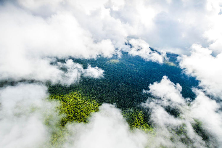Aerial view of clouds over green landscape