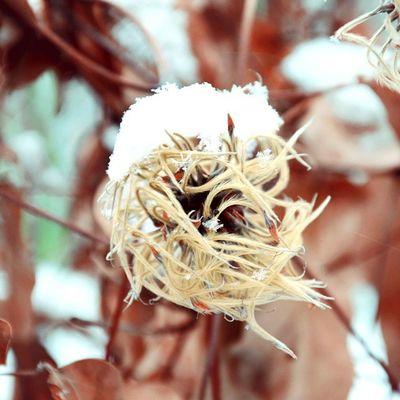 Travel Today Topvsco Vscocam vscostyle vscoonly vscogood vscobest vscolovers vscomood vscofollow vsco vscodaily winter nature