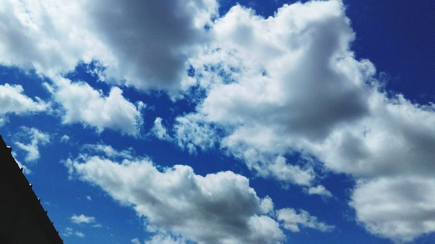 Taking Photos Hello World Check This Out Enjoying Life Michigan Summer ☀ 2016♡ Cloud_collection  Clouds And Sky Pretty♡ Buatiful_sky Enjoying Life After Noon Clouds Blue Sky Hello World Hot Summer Day Enjoying The View Amazing Day ♥ Blue Sky And Clouds Hello World ✌ Cloudporn Skyporn