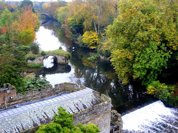 Visited the Warwick castle and I saw this scenic view outside the window. Autumn Autumn Collection Autumn Colors Autumn Leaves Janlyn Mode River View Riverside Trees Autumn🍁🍁🍁 Beauty In Nature Day Growth Nature No People Outdoors River Riverbank Riverscape Scenics Trees And Bushes Trees And Nature Trees And River Trees And Water Photography Water Water_collection