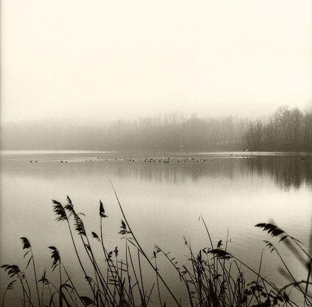 Lago Avigliana Nature Lake Outdoors Travel Destinations Landscape Torino