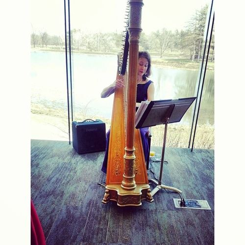 You know you're at a fancy place when you see a harp! Harp Fancy Richpeople Lifestyle brunch huge window sneaked picture