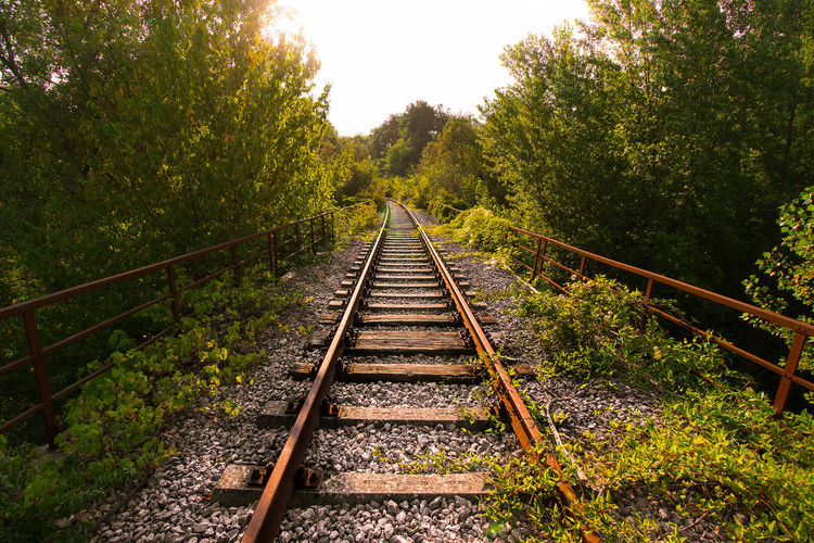 Railroad tracks amidst trees against clear sky