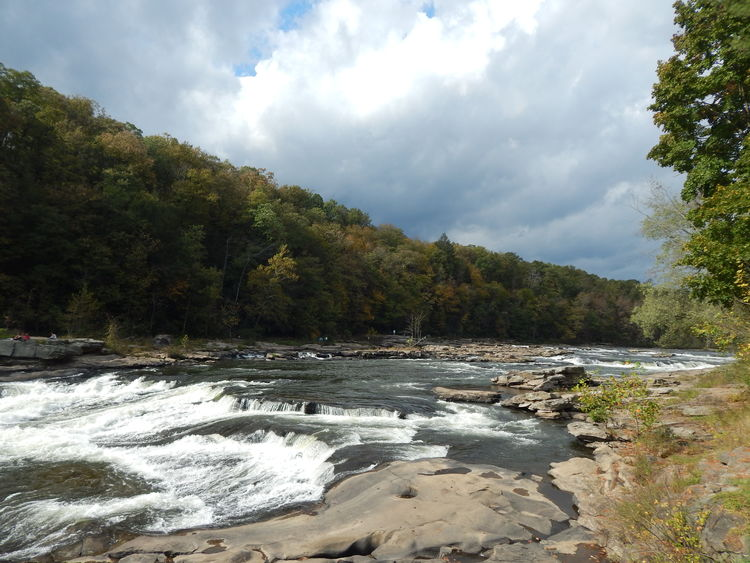 Flowing Noise Ohiopyle Pennsylvania Trees Motion Outdoors Power In Nature Rocks Sky Tranquil Scene Water