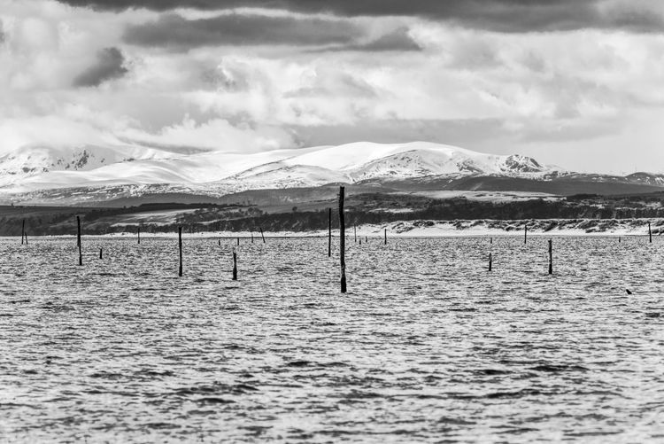 Looking across the Moray Firth from Culbin Sands Culbin Firth Marsh Moray Moray Eel Scotland Tree Winter Beach Black And White Cloud - Sky Dead Mountain Nature Scenics - Nature Sea Sea And Sky Sky Snow Special Site Interest Speyside Sssi Tranquility Water Winter