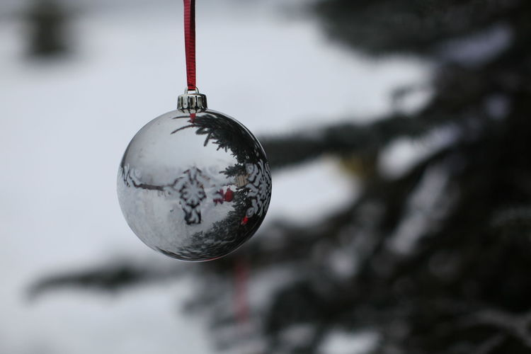 Hanging Christmas Ornament Focus On Foreground Close-up Sphere No People Winter Snow Decoration Tree Christmas Decoration Outdoors Day Christmas Cold Temperature Reflection Nature Shiny Celebration Silver Colored