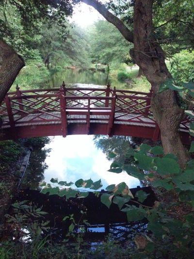 Historic Area Bridge Williamsburg