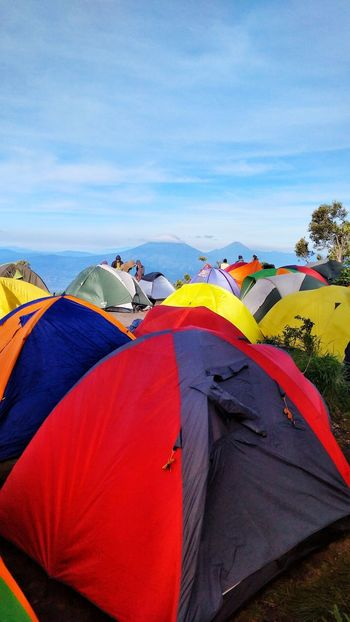 camp ground Tent Camping Adventure Landscape Sky Travel Destinations Nature Cloud - Sky Mountain Landscapes Perspectives On Nature Outdoors Nature Sunlight Sunrise Hiking Merbabu Merbabu Mountain Merbabumount Sindorosumbing An Eye For Travel
