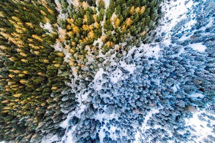 Flying High Winter Nature Backgrounds No People Beauty In Nature Aerial View Aerial Photography Aerial Shot Aerial Outdoors Day Top Down View Snow Germany Bavaria Nature Colorful Forest Cold Temperature Fresh on Market 2017 The Great Outdoors - 2017 EyeEm Awards