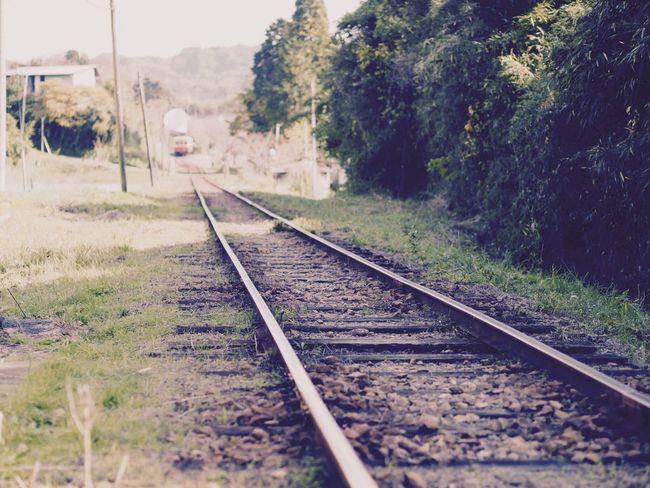 小湊鉄道 上総中野 Railroad Track Tree Rail Transportation Transportation Nature Day Sky No People Outdoors Scenics Beauty In Nature Landscape