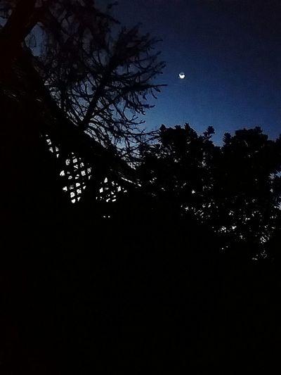 Crecentmoon Moonshot Nature Photography Californiathroughmylens Allaboutnature Onelightsource Little World