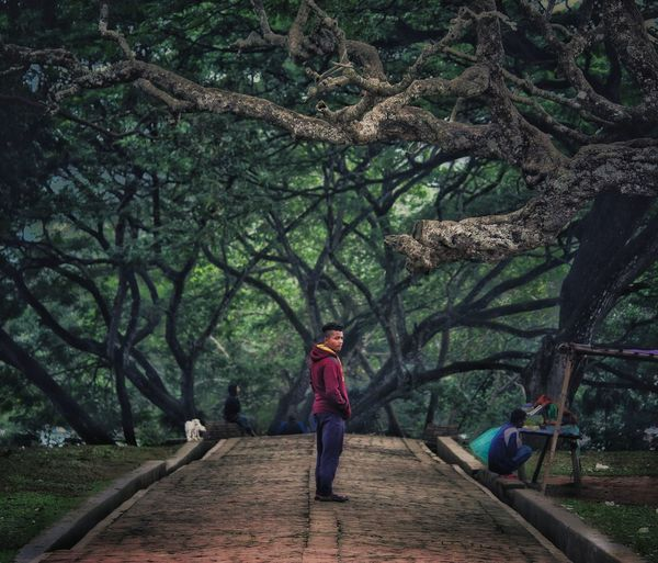 Illusion!!! Tree full length pathway wall lamp Narrow the way forward Children Treelined posing woods diminishing perspective vanishing point Tree Full Length Pathway Wall Lamp Narrow The Way Forward Children Treelined Posing Woods Diminishing Perspective Walkway Countryside Lamp Post