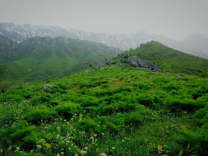 Irantravel Iran Iranian_photography Kordistan Kurdestan Oraman Horaman Sanandaj First Eyeem Photo