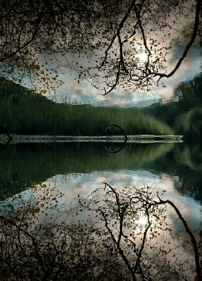 Reflection Lake Water Sky Nature Outdoors Tree Beauty In Nature Symmetry Scenics No People Day Mirror Reflection