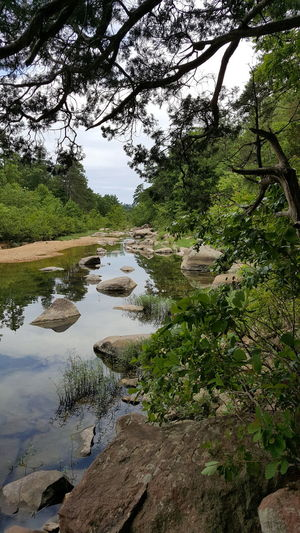 Castor River River River View Riverbank Nature_collection Nature Photography Showcase June