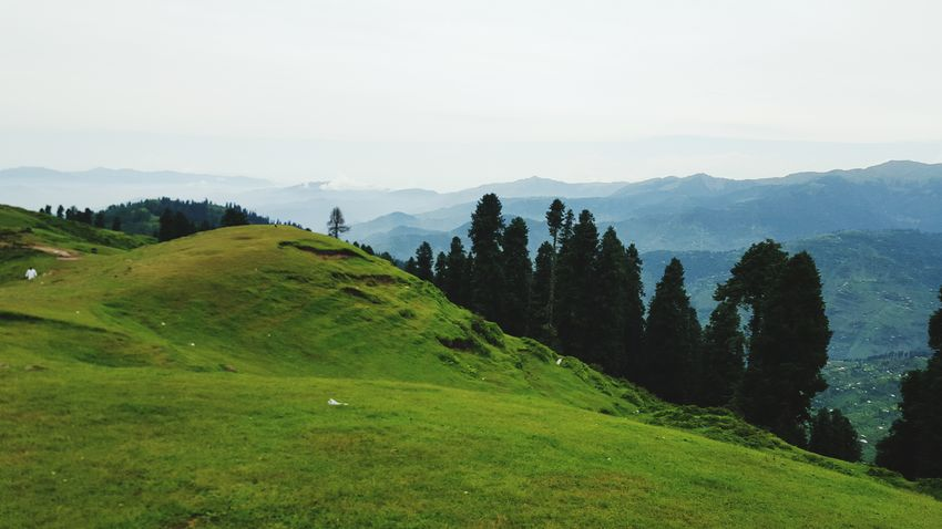 Vscocam Tolipeer Ajk Pakistan The Traveler - 2015 EyeEm Awards The Explorer - 2014 EyeEm Awards EyeEmBestPics The Great Outdoors - 2015 EyeEm Awards Popular Nature_collection Colors EyeEm Best Shots - Nature Getting Creative Getting Inspired OpenEdit Open Edit Minimalism Capture The Moment Hello World VSCO Beauty Of Pakistan EyeEm Best Shots - Landscape EyeEm Gallery Pakistani Traveller