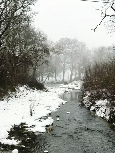 River Nature Outdoors Day No People Water Winter Cold Temperature Snow Bare Tree Sky