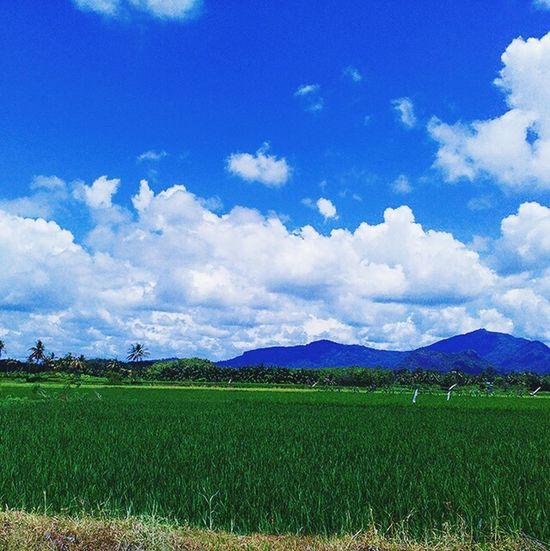 Cloud - Sky Beauty In Nature Sky Day No People INDONESIA Sumatera Likephotografi Hello World