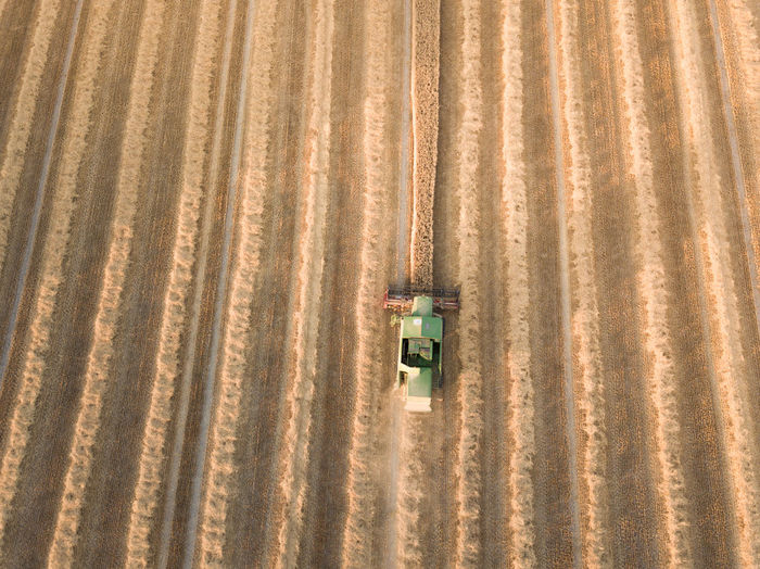 Agriculture Drone  Farm Farmer Field Golden Tractor Agricultural Field Dronephotography Germany Golden Hour Landscape Lightroom Mavic Pro Rural Landscape Rural Scene Sunset Yellow
