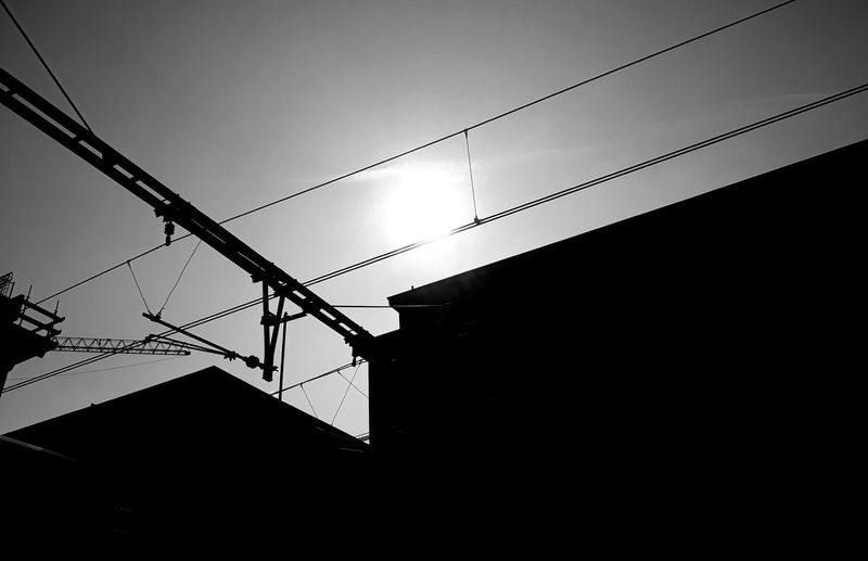 Sun Sunny Day Bird Telephone Line Technology Cable Electricity  Silhouette Perching Power Line  Power Supply Sky Electricity Pylon Power Cable