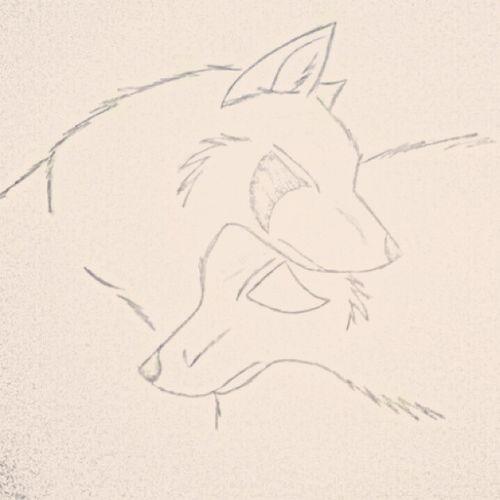 """""""Истинският мъж е като вълк- или е сам, или с една вълчица завинаги!"""