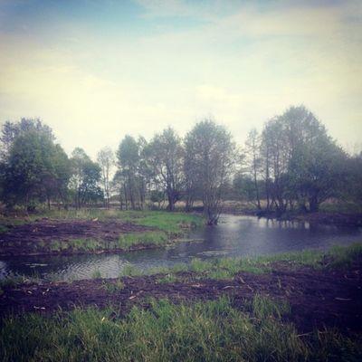 И снова природа)