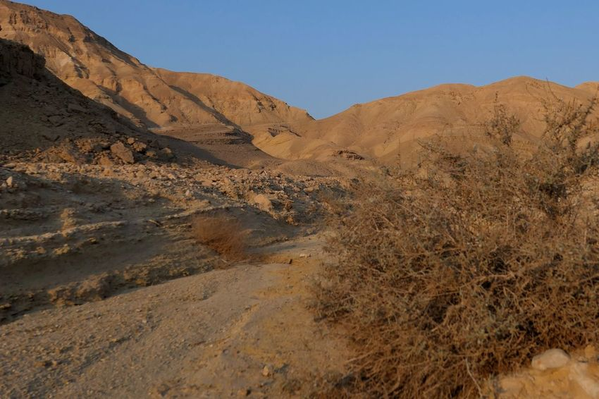Israel Negev  Arid Climate Sky Land Tranquility Mountain Landscape Scenics - Nature Clear Sky Nature Tranquil Scene Beauty In Nature Environment Desert Day No People Mountain Range Non-urban Scene Climate Sunlight