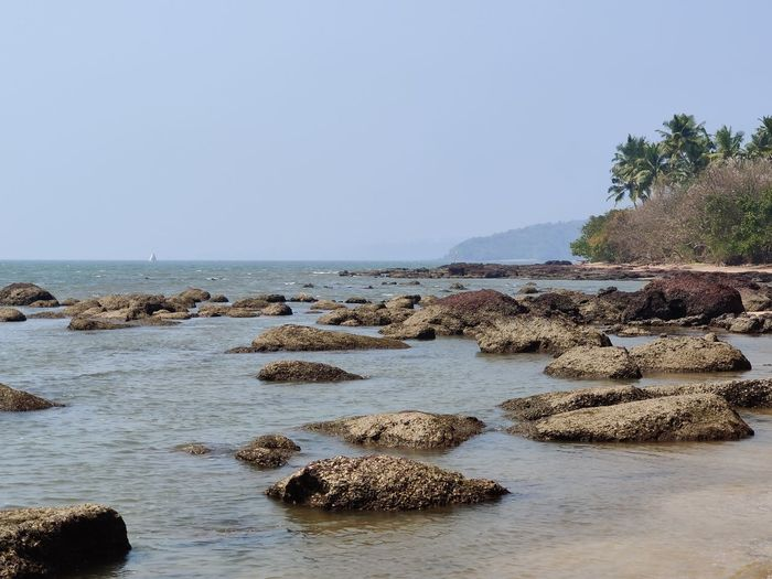 Scenic view of rocks in sea against clear sky