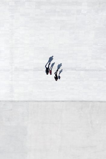 Aerial View Of People Walking On Road