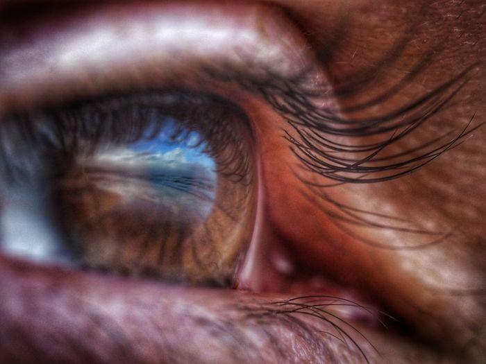 Eyes Eyesight