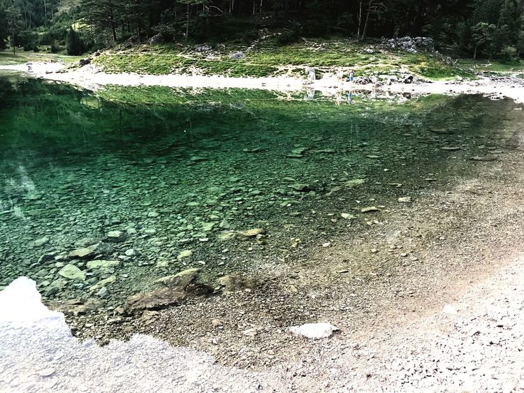 Grüner See , Austria Lake Grüner See Austria Water Nature Day No People Outdoors Tranquility Beauty In Nature EyeEmNewHere An Eye For Travel