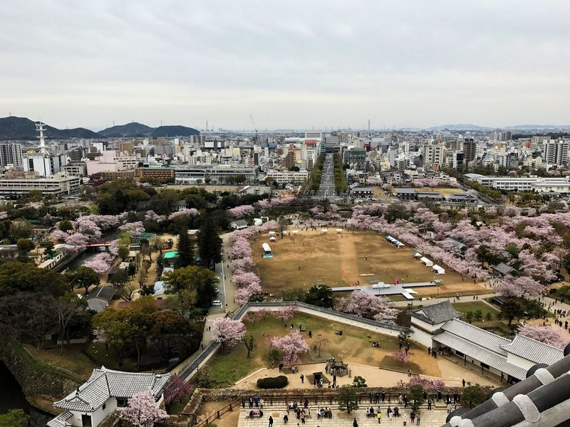 Fujifilm FUJIFILM X-T1 広角レンズ 姫路城 Cherry Blossoms Introducing Culture Of Japan Which Must Be Left To The Future…… 未来に残す日本の文化