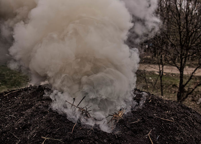 Smoke emitting from burnt wood in mud at yard