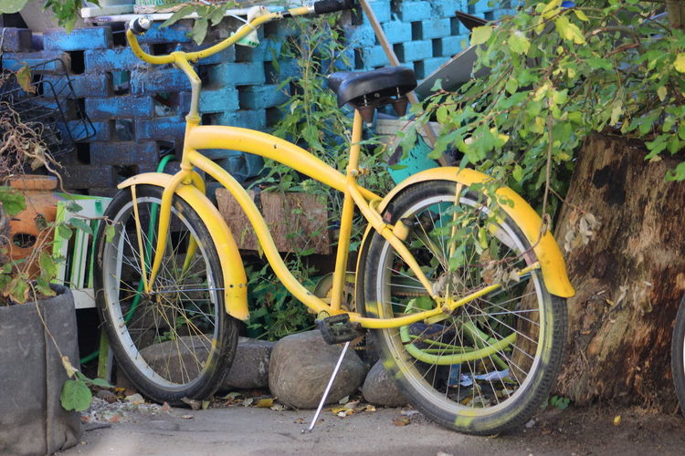 yellow mobility