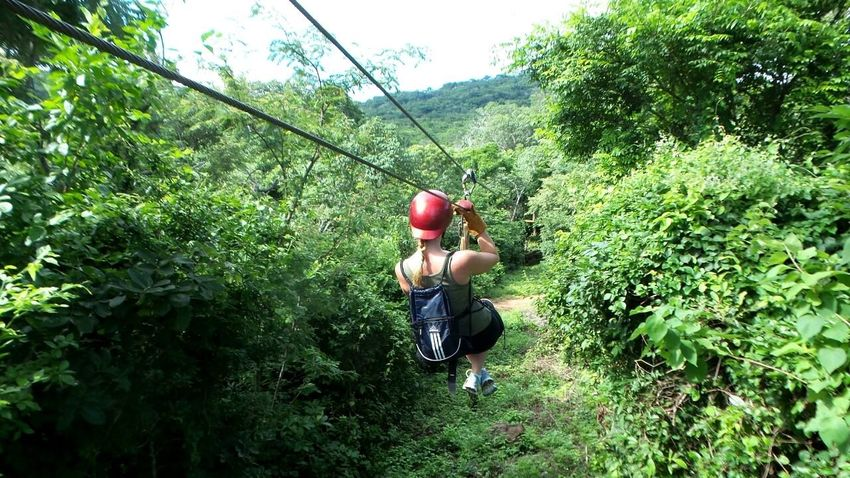 Abundance Adventure Arrangement Balance Carefree Central America Close Up Day Directly Above Forest Full Frame Fun Green Green Color Growth Large Group Of Objects Nicaragua No People Outdoors Recreational Pursuit San Juan Del Sur , Nicaragua Side By Side Working Zipline