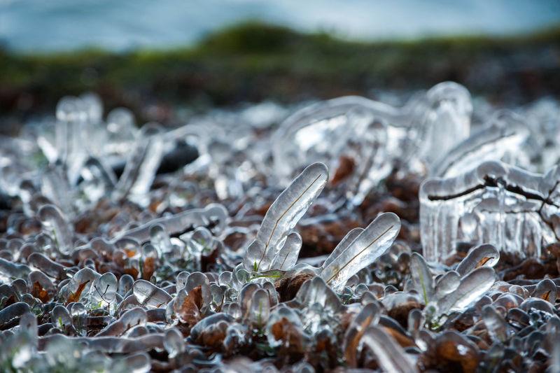 Full frame shot of glass of water on land