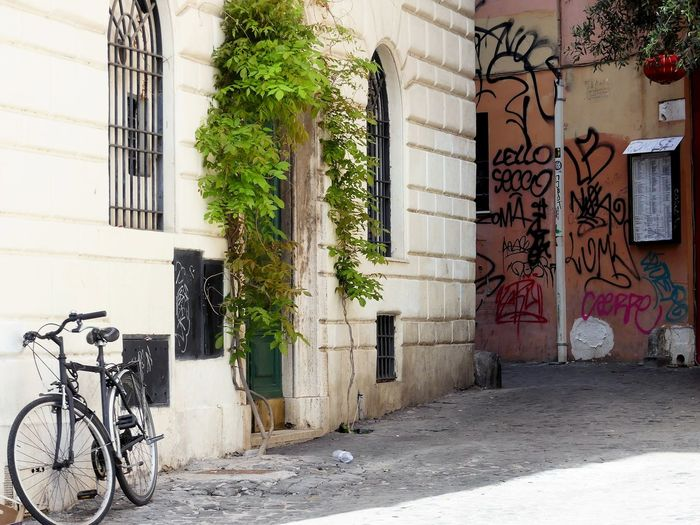 Bicycle outside building by street in city