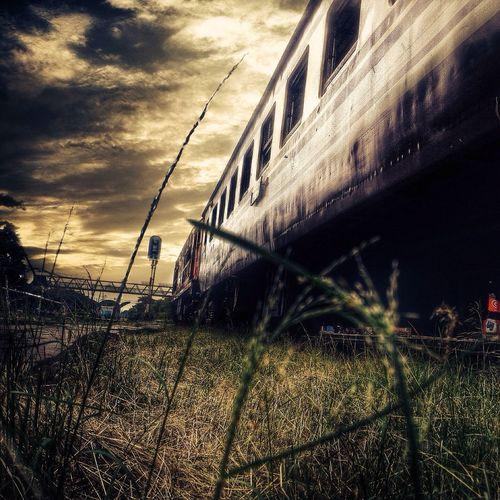 ซักวันหนึ่ง Hello World Train Thailand