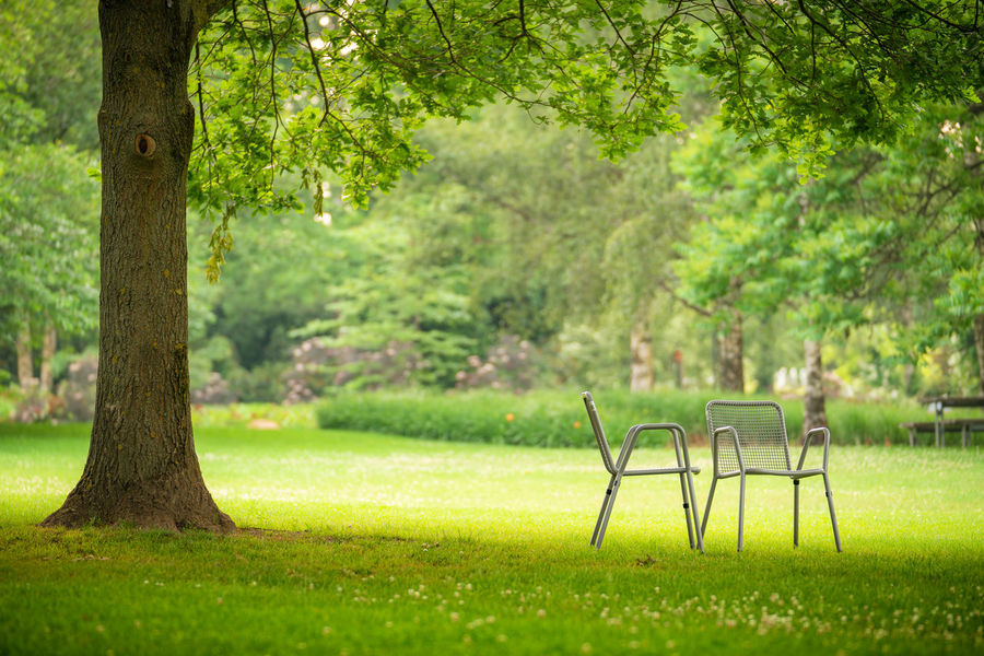 unter dem Baum Day Grass Green Color Nature No People Outdoors Park Park - Man Made Space Plant Seat Tree