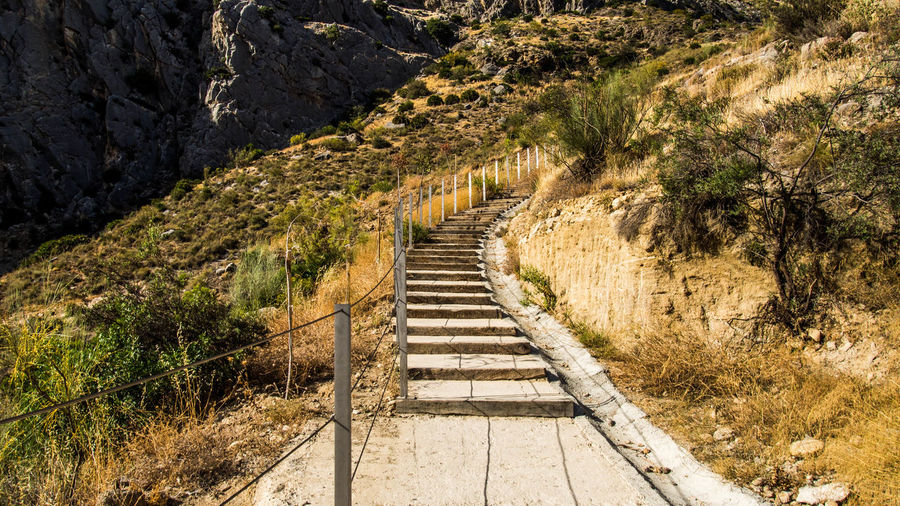 Narrow Stairs Along Landscape