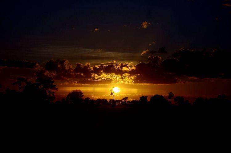 Sunset Sun_collection Sunset_collection Natureza Nikon Pordosol Skyporn Sky Sol Brasil