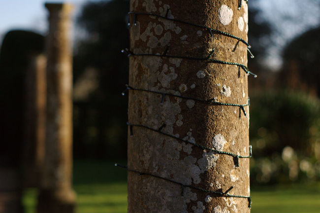 Close-up Day Focus On Foreground Formal Gardens Montacute House No People Outdoors Prime Lens Somerset England Stone Pillars Sunny Day Wound Round