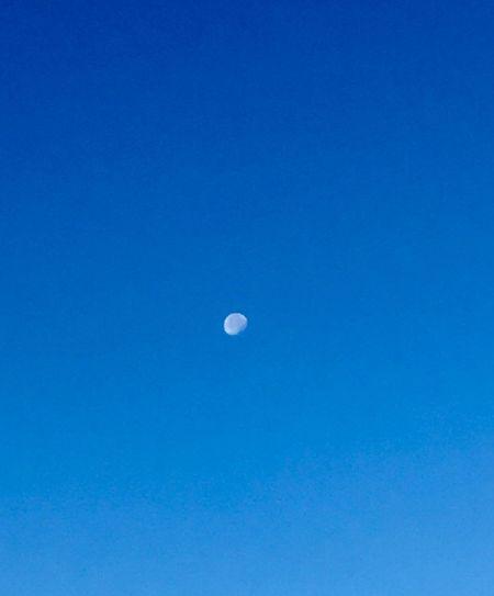 Blue Sky Copy